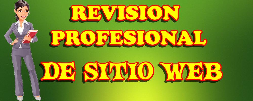 Revisión Profesional de Sitio Web