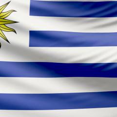Agencia SEO en Uruguay