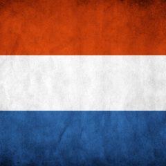 Agencia SEO en Holanda