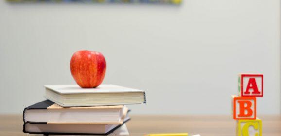 Buenas razones para estudiar una carrera vinculada a la Educación infantil